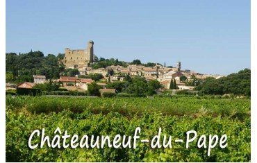 Guide to « CHATEAUNEUF DU PAPE BLANC »