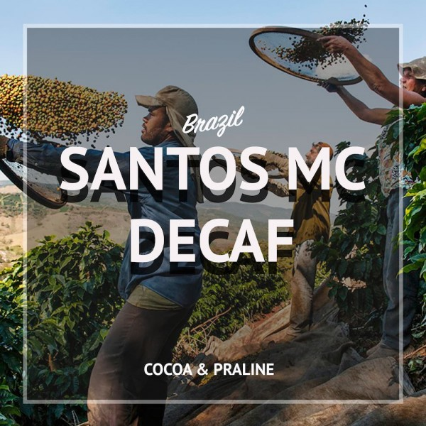 Brazilian Decaf 250gr